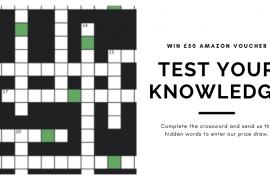 fastlane turnstiles crossword