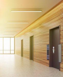 Door detective in office hallway